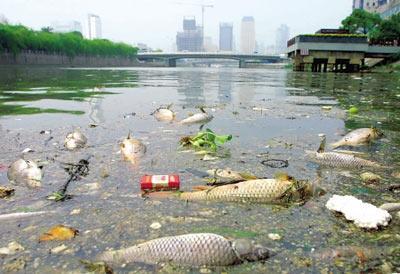 山东通报多市环境问题