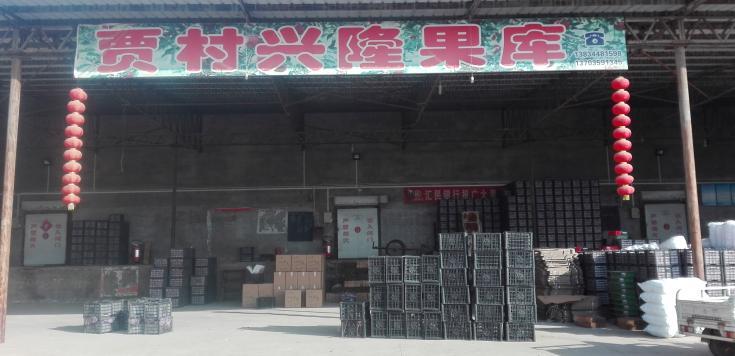 万荣县贾村乡杨郭兴隆果库图片
