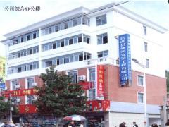 岳西县建筑安装工程有限公司